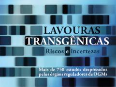 Lavouras Transgênicas – Riscos e incertezas – Mais de 750 estudos desprezados pelos órgãos – reguladores de OGMs (ePUB)